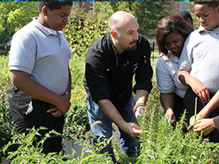 Teacher showing four students various plants in an outdoor environment